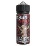 Freeze breeze - Citrus blast - Просто холодный цитрусовый сок