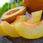 Blax 900 Mega Melon Сочная дыня. Одноразовый электронный испаритель (парогенератор)