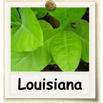 Ароматизатор Xi'An Taima - Louisiana, 5ml